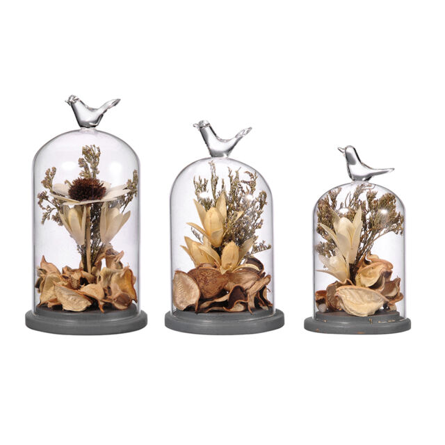 Flower Glass Cover Dried Vase Terrarium Bottle Micro Landscape Container Decor