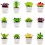 Artificial-Succulent-Plants-Small-Fake-Succulent-Bonsai-Garden-Miniature-Decor thumbnail 2