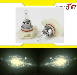 Halogen-PS24W-5202-H16-24W-3800K-Stock-Two-Bulbs-Fog-Light-Replacement-Lamp