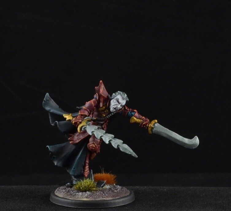 Painted Gastaredh, Vampire from Reaper Miniatures, male D&D character