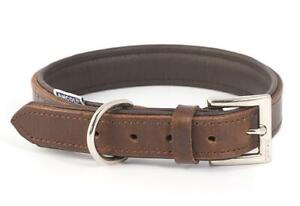 Ancol-Vintage-Leather-Dog-Collars-amp-Leads-All-Sizes