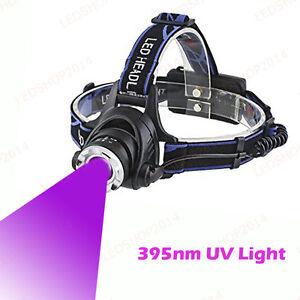 10W Dual LEDs White Head Light Fishing Zoom Ultraviolet UV Black Light Headlamp