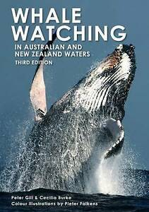 Whale-Watching-in-Australia-and-New-Zealand-Waters