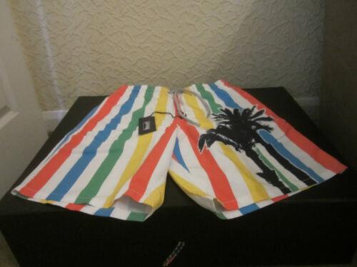 VILEBREQUIN Multicolore A Righe Palm Stampa Nuoto Pantaloncini