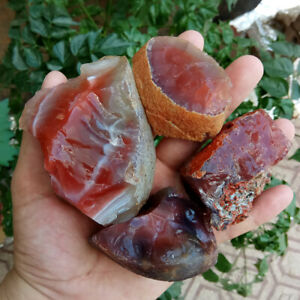 100g-Bulk-Lot-Natural-Rough-Carnelian-Raw-Stone-Crystal-Red-Agate-Mozambique