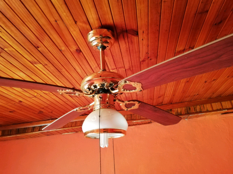 Ceiling fan with light for sale