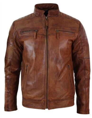 Homme Marron Clair Vieilli Biker Style Vintage Cuir Couleur Véritable Blouson p8Pnwp