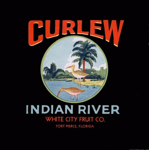 Fort Pierce Florida Indian River Curlew Orange Citrus Fruit Crate Label Print