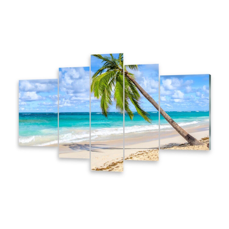 Mehrteilige Bilder Glasbilder Wandbild Kokosnusspalme