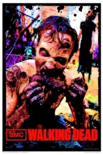 The Walking Dead Zombie Flesh Eater Flocked Blacklight Poster (23x35)