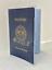 Passport-Protector-Clear-Cover-Vinyl-Case-sturdy-Plastic-Holder-Passport-Sleeve thumbnail 1