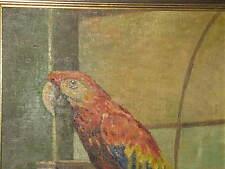 RAUCH Ernst, *XX.Jhd. Wundervoller Papagei