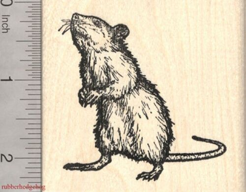 Standing Upright K3014 WM Rat Rubber Stamp