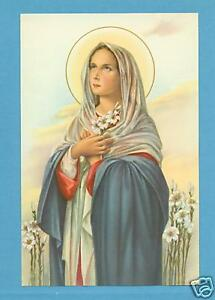 VINTAGE-Catholic-Large-holy-card-MARY-MOST-PURE-Lilies-Postcard-size-paper