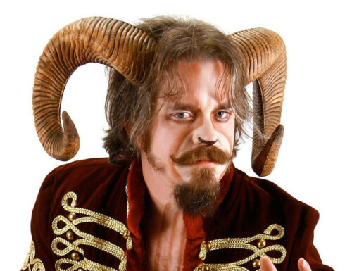 Ram Horns Adult Costume Accessory Elope