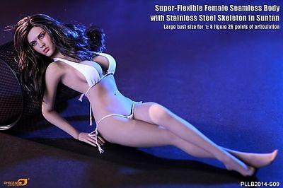 Phicen Super-Flexible Seamless BIG bust body w/ Steel Skeleton Tan 1/6 Figure