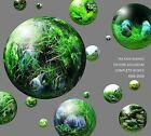 Nature Aquarium Complete Works 1985-2009 by Takashi Amano (Hardback, 2011)