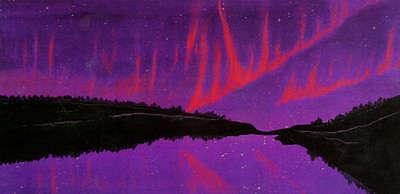Aurora Borealis Purples Crown  BT Panel Frond Cotton print