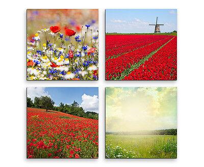 Wandbilder 4x30x30cm Leinwandbild auf Keilrahmen Mohnblumen Wiese Bilder Deko