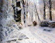 Monsted Mork Peder Forest In Winter Print 11 x 14    #3227