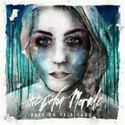 Hold On Pain Ends von The Color Morale (2014)