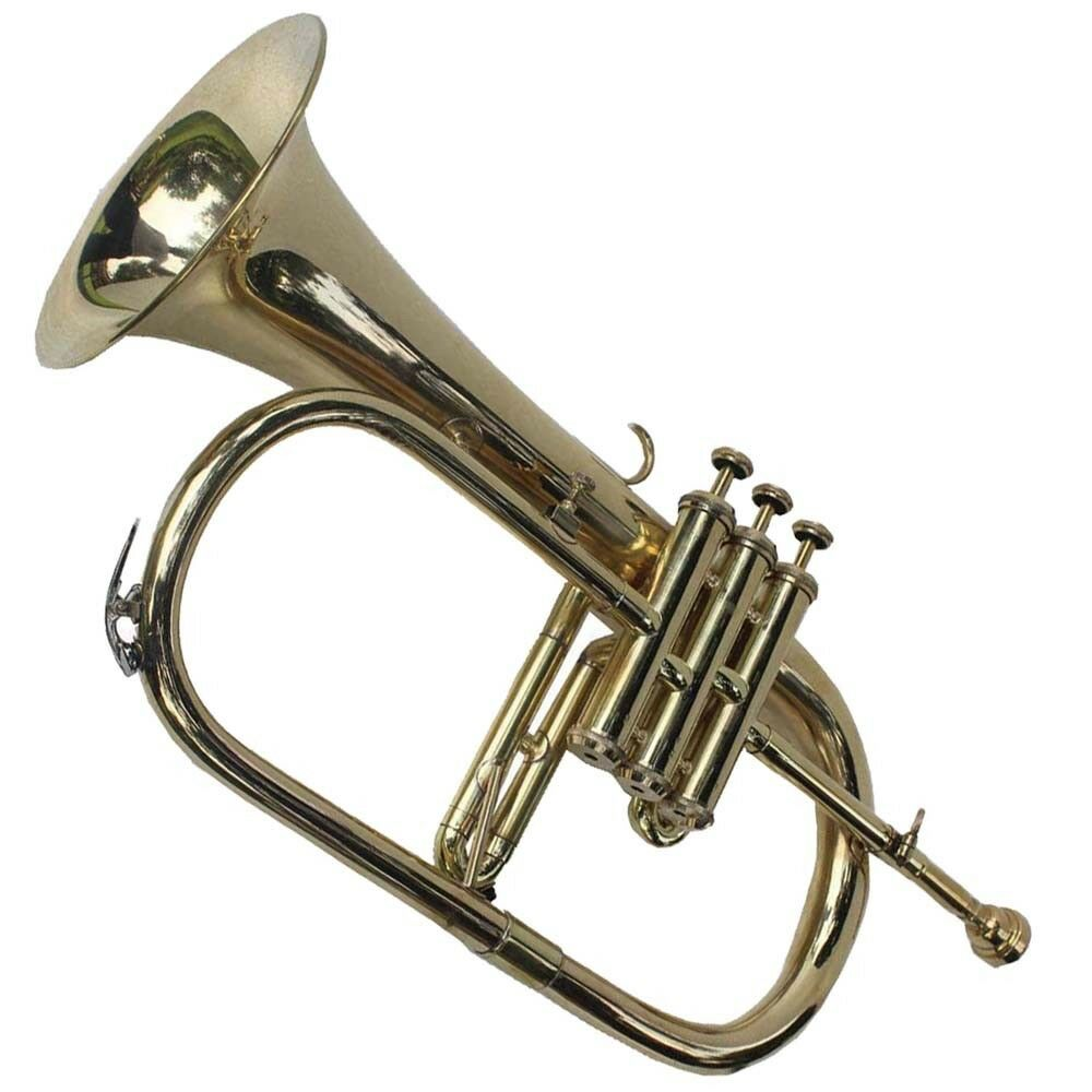 AMAZING DEAL FLUGEL HORN BRASS gold FINISH CASE & MOUTHIPIECE CHU_00737