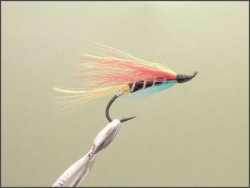 choix de tailles Lot de 6 Garry chien singles Salmon Fishing Flies la pêche au saumon