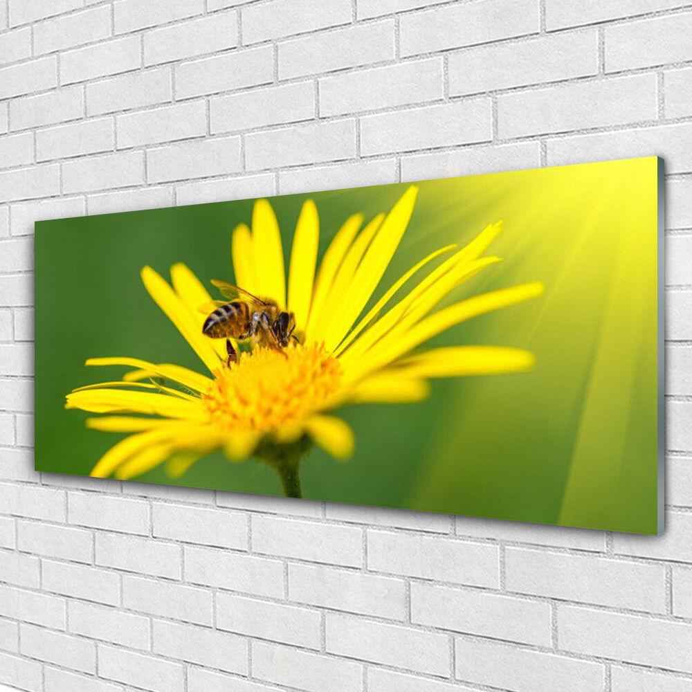 Impression sur verre Wall Art 125x50 Photo Image guêpe fleurs