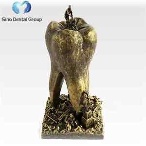 Details about 1 x Sino Dental Art Gift Dentist Sculpture Dentistry Teeth  Dentist Figurine