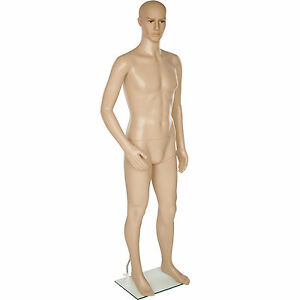 mannequin homme de vitrine de couture masculin support de verre taille 185 cm ebay. Black Bedroom Furniture Sets. Home Design Ideas