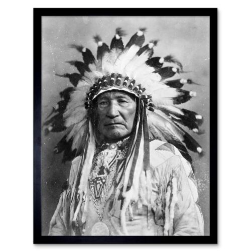 Vintage Native American Indian Mountain Chief 12X16 Inch Framed Art Print