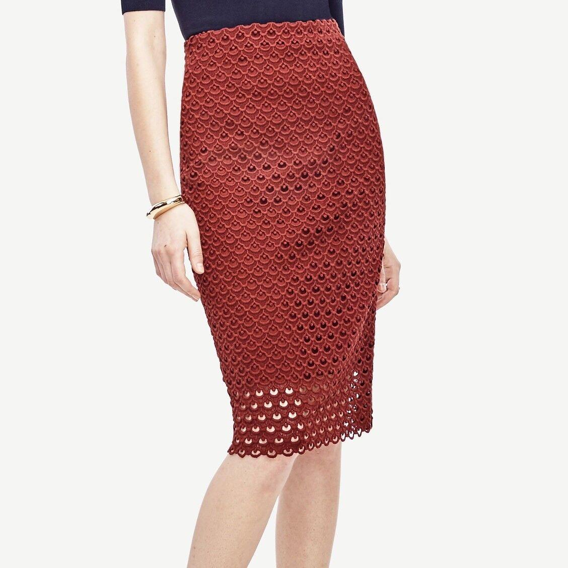 NWT  129 Ann Taylor Tulip Lace Pencil Skirt Größe 2