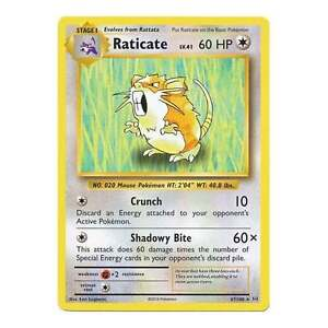 067//108 Raticate POKEMON XY—EVOLUTIONS