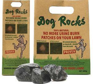 Dog Rocks - (200g / 600g) Bols d'eau Eau Roche Ignée Urine Herbe Brûlure Pierre de Pierre G