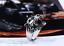 Anello-Tigre-Uomo-Acciaio-Inox-Fede-Massiccio-Donna-Unisex-Harley-Moto-Tiger miniatura 9