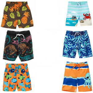 f67617da8051e Gymboree Baby Toddler Boy Swim Trunks 3 6 12 18 24 2T 3T 4T NWT | eBay