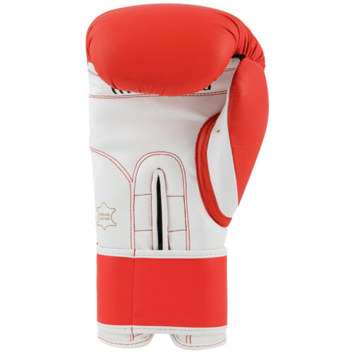 Title Boxing Pro Style 3.0 Hook and Loop Leather Training Gloves Red//White