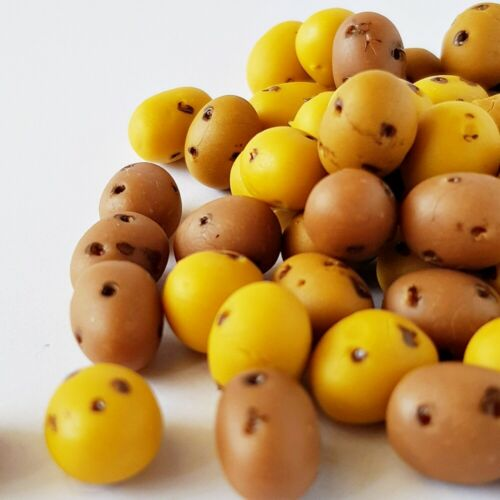 10x Loose Mini Potatoes Vegetable Dollhouse Miniature Food Supply WHOLESALE Lot