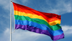 Rainbow-Flag-3-x-5-FT-Gay-Pride-Lesbian-36-034-x-60-034-LGBT-Flag-with-Grommets