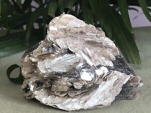 Rough-Black-Tourmaline-Mineral-Specimen-Raw-Gemstone-Crystal-Reiki-Metaphysical