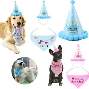 Pet Happy Birthday Hat Headwear With Neckerchief Party Costume Decor