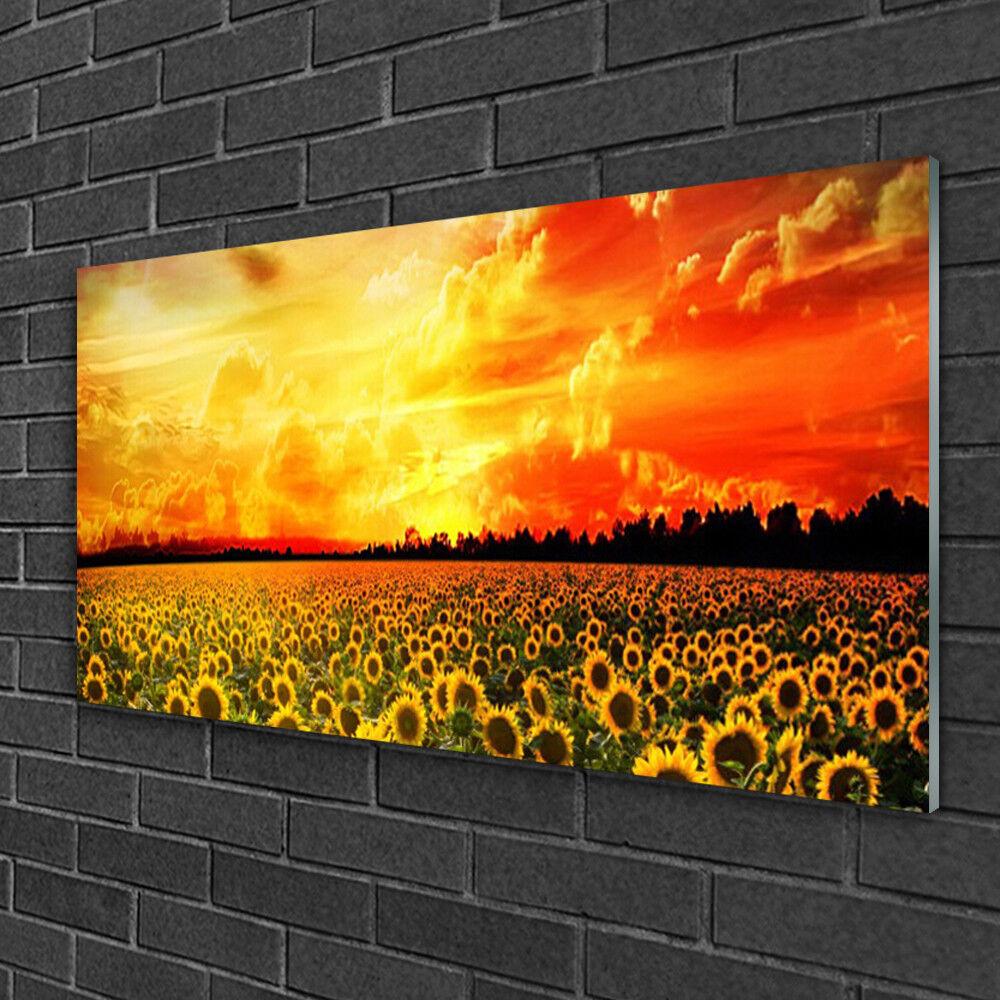 Tableau sur verre Image Impression 100x50 Floral Prairie Tournesol