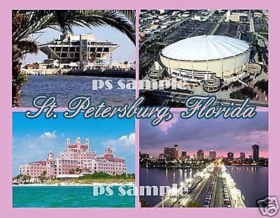"Petersburg Florida FRIDGE MAGNET travel souvenir /""style C/"" Greetings from St"
