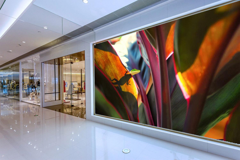 3D Tropische Blätter 794 Tapete Wandgemälde Tapeten Tapeten Tapeten Bild Familie DE Lemon | Hochwertige Materialien  | Verrückter Preis, Birmingham  | Luxus  63fc16