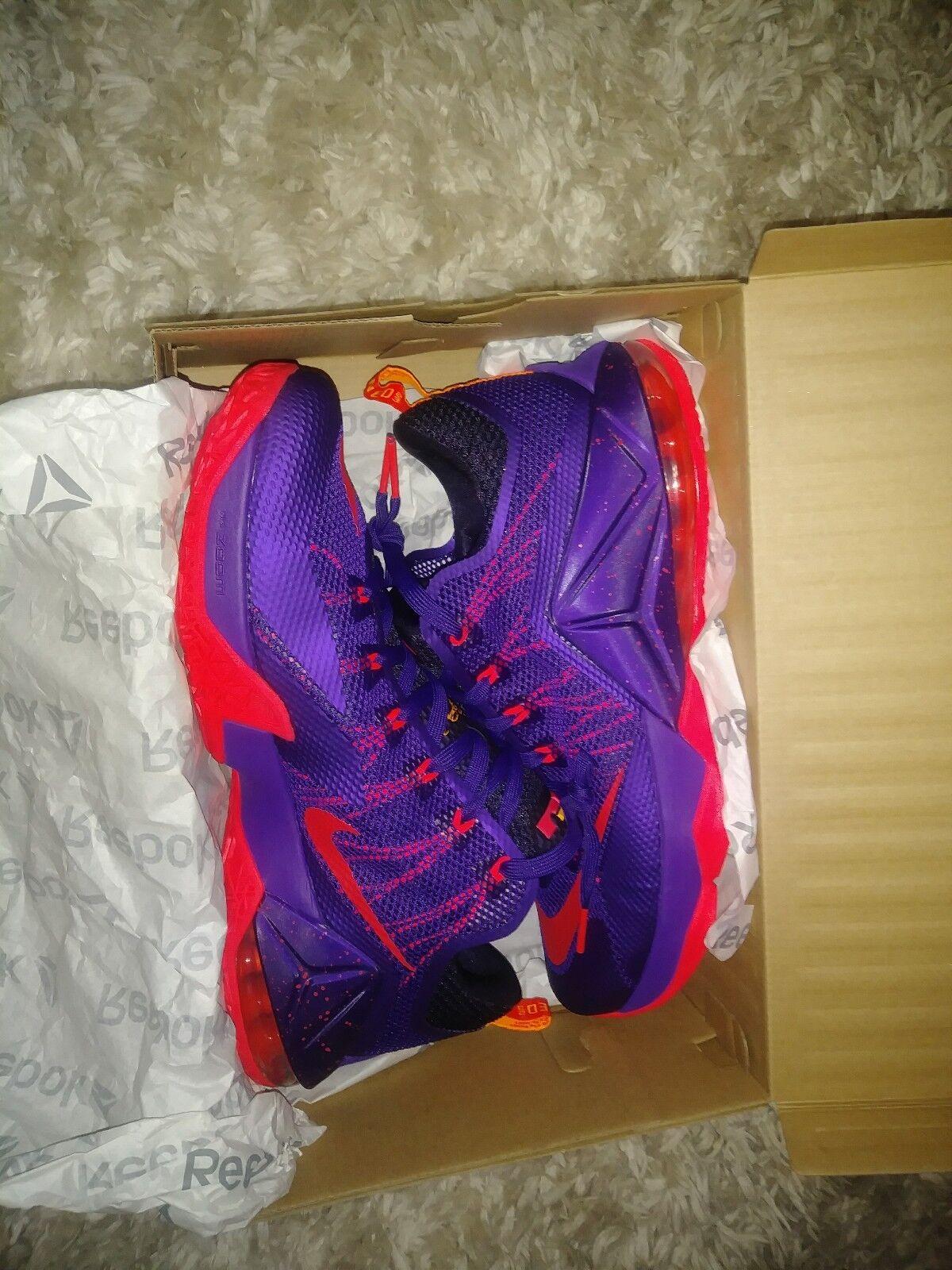 Nike Lebron Earned Size 13