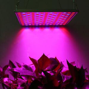 45w Led Grow Light Red Blue Spectrum Indoor Hydroponics