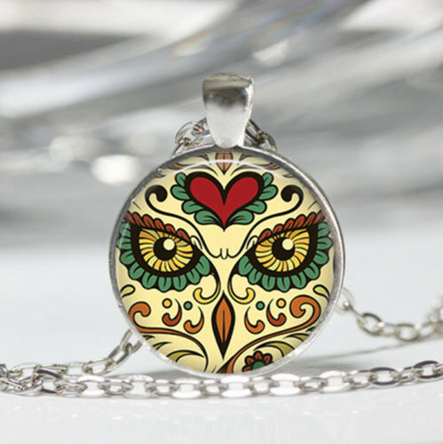 Owl photo Tibet silver Dome Glass Cabochon Necklace chain Pendant #355