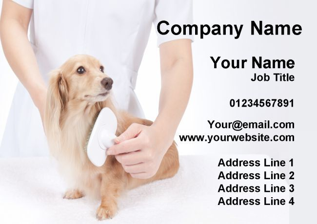 CANE Gatto Animale GROOMER Grooming servizio personalizzato business cards