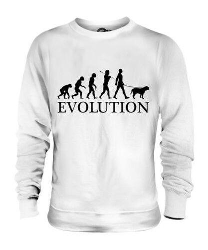 Bullmastiff Evolution Of Man Unisex Suéter Hombre Mujer Dog Lover Regalo