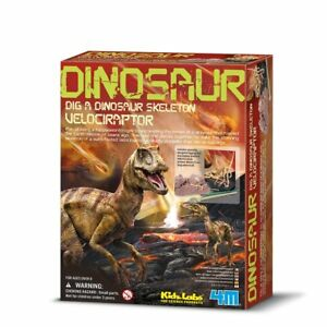 4m Dig A Dinosaur Squelette Vélociraptor: Kidz Labs Ages 8 Plus U05zfgn6-07162508-141413665